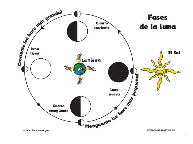 Dibujos de fases lunares - Imagui