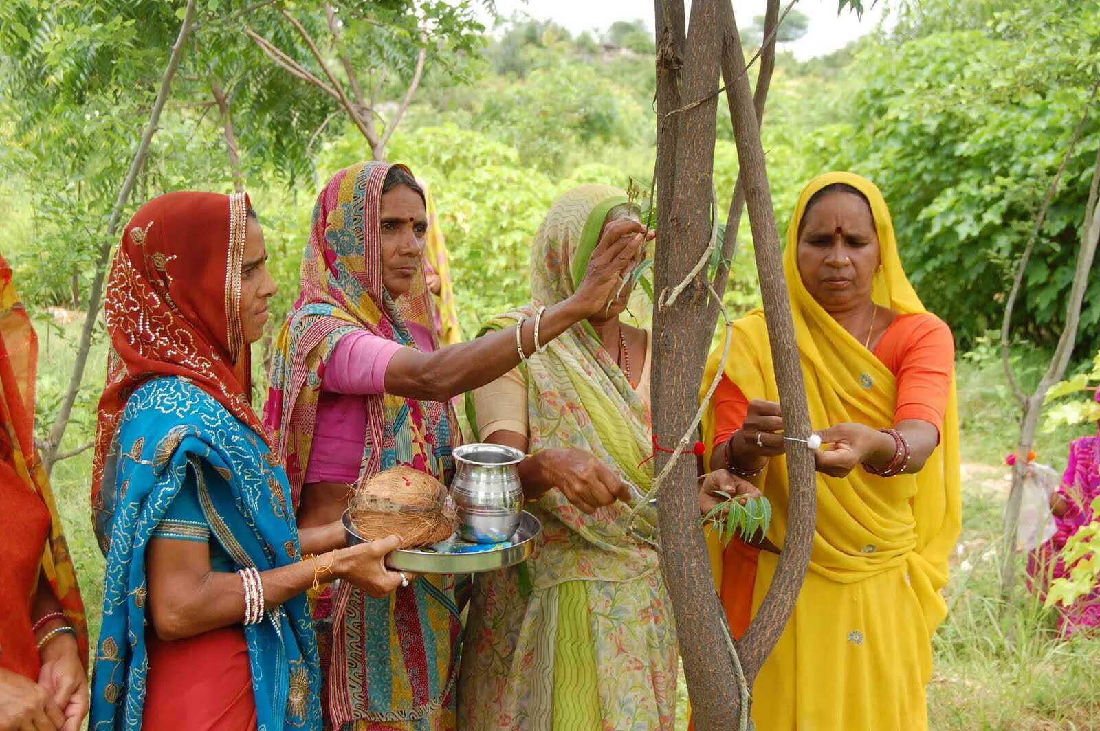 Resultado de imagen para india mujeres plantan arboles