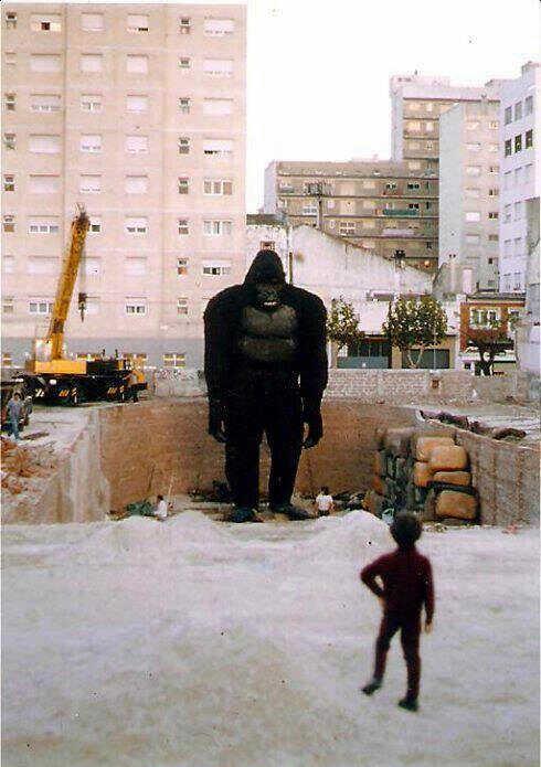 King Kong en Mar del Plata11